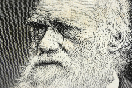 If You Want To Succeed, Look to Darwinian Evolution