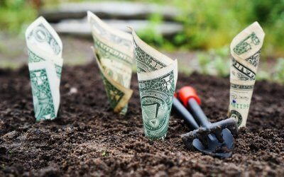 Does Your Financial Model Drive Growth?